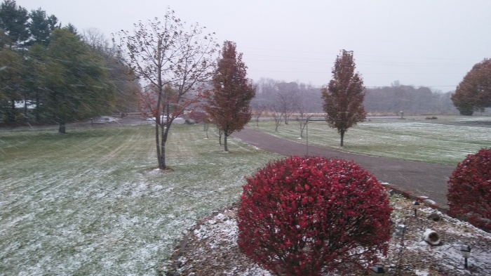 snow-in-ohio-nov-19-004