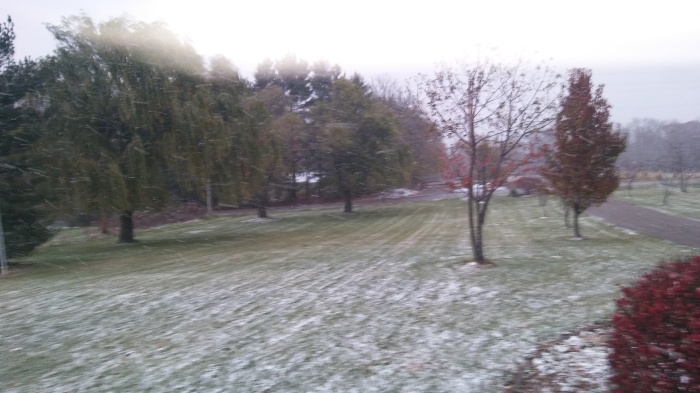 snow-in-ohio-nov-19-005